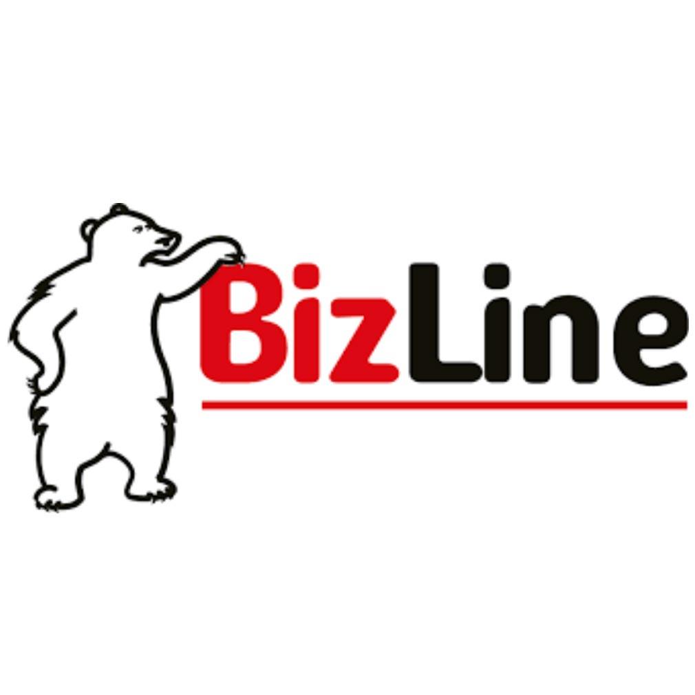 Bizline - BIZ710590 - BIZLINE 710590 - Bande perforée 10 m x 12 mm x 0.7 mm