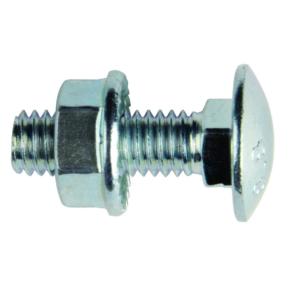 Bizline - BIZ770142 - Boulon tête ronde collet carré M6 x 20 mm (x 100)