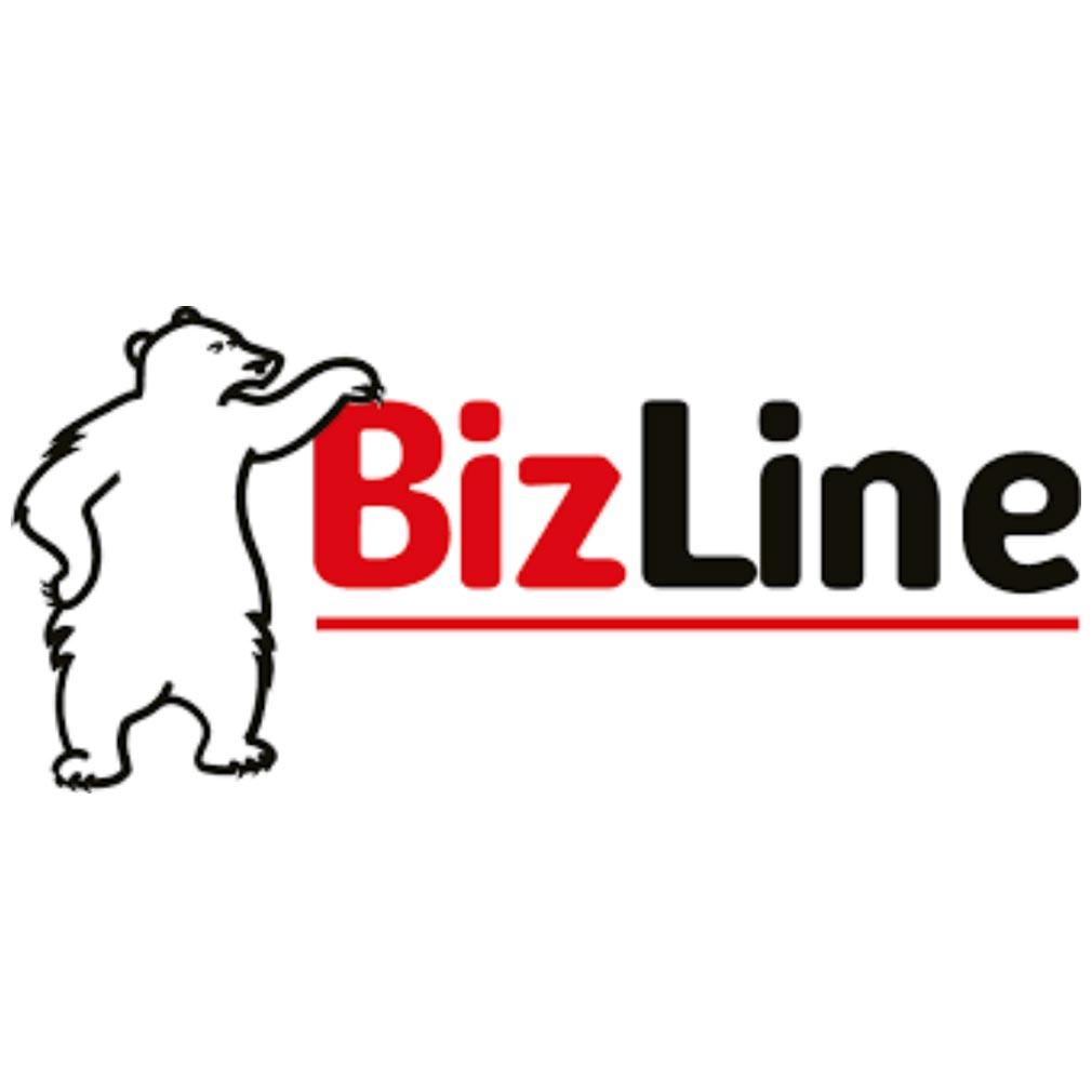 Bizline - BIZ790530 - CAISSE A OUTILS DE CHANTIER 21' 53.5 CM